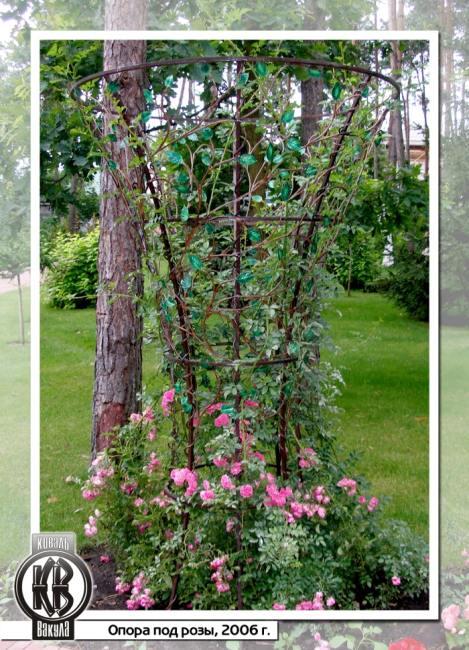 Как своими руками сделать опору для розы плетистой