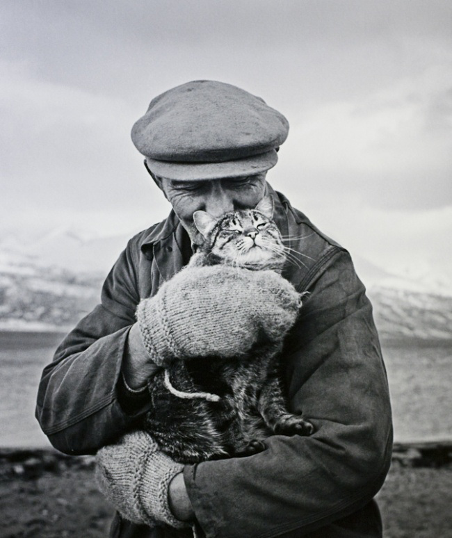Старинные фотографии кошек