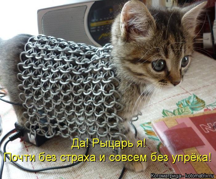 Котоматрица: Да! Рыцарь я!  Почти без страха и совсем без упрёка!