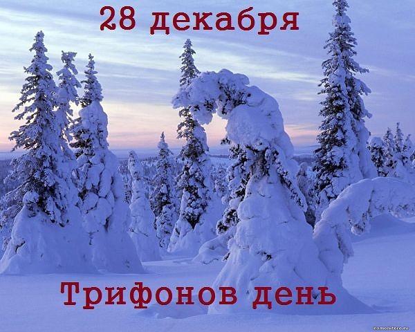 28 декабря - Трифонов день: традиции и приметы
