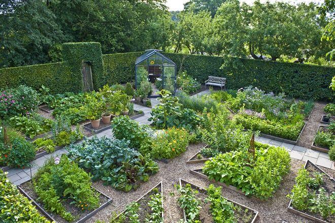Сад огород своими руками это важно