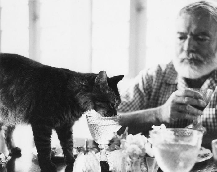 Эрнест Хемингуэй и его коты