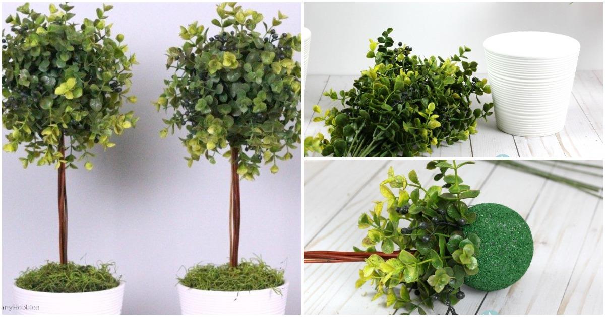 Топиарий: отличная альтернатива комнатным растениям