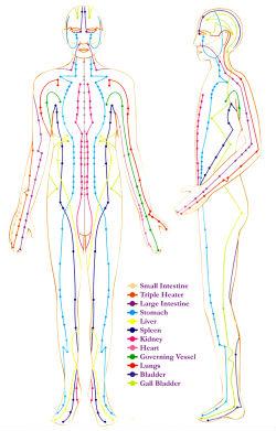 Суть метода Даоинь — нормализовать кровоток и гармонизировать работу основных энергетических каналов в нашем теле