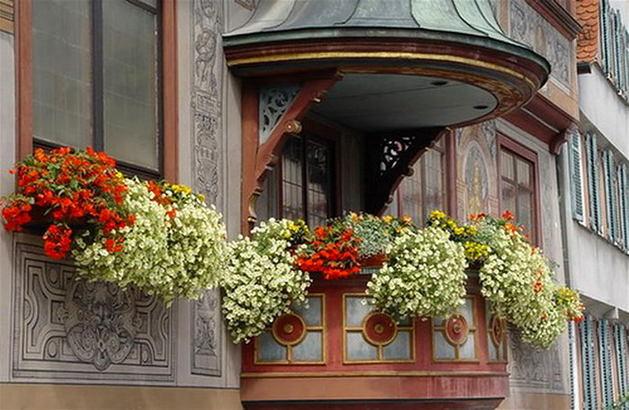 20 идей и 10 советов для вертикального озеленения балкона