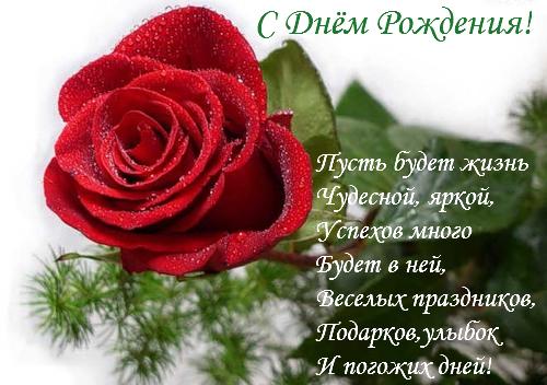 Поздравления в день рождения поздравления для однокурсники