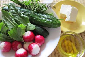 Прежде всего необходимо подготовить продукты. Нам понадобятся огурцы, редис, щавель, петрушка, мягкий сыр (на ваше усмотрение), для заправки масло растительное (по вашему выбору) и соль по вкусу.