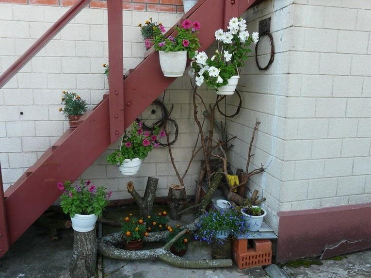 Корни и коряги на даче в саду (25 фото)