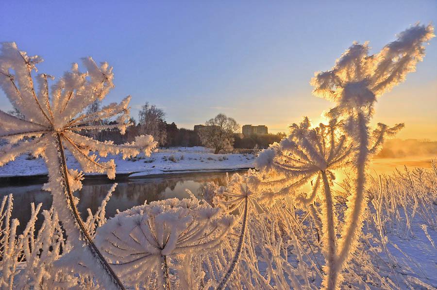 Зимнее утро!