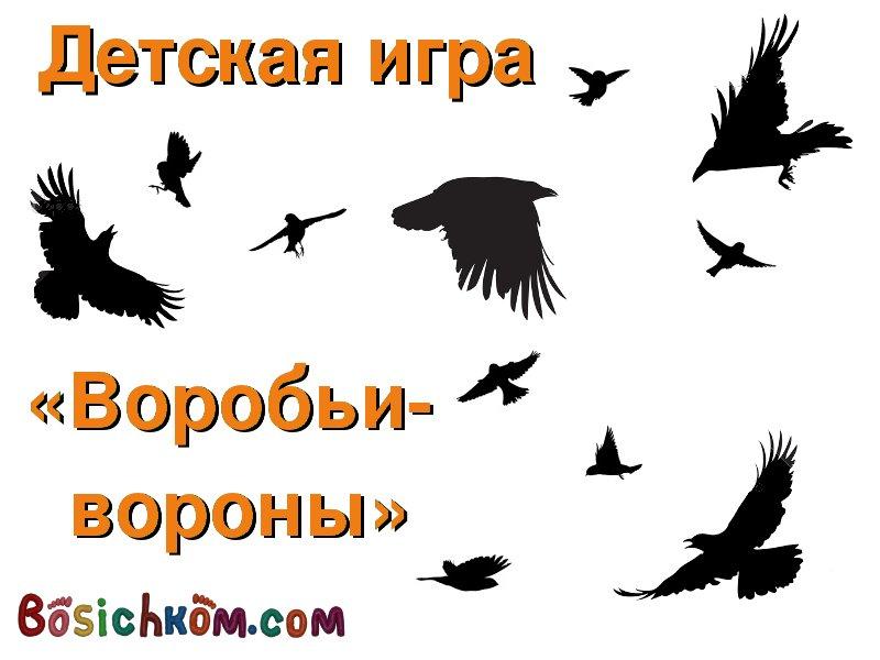 Воробьи-Вороны
