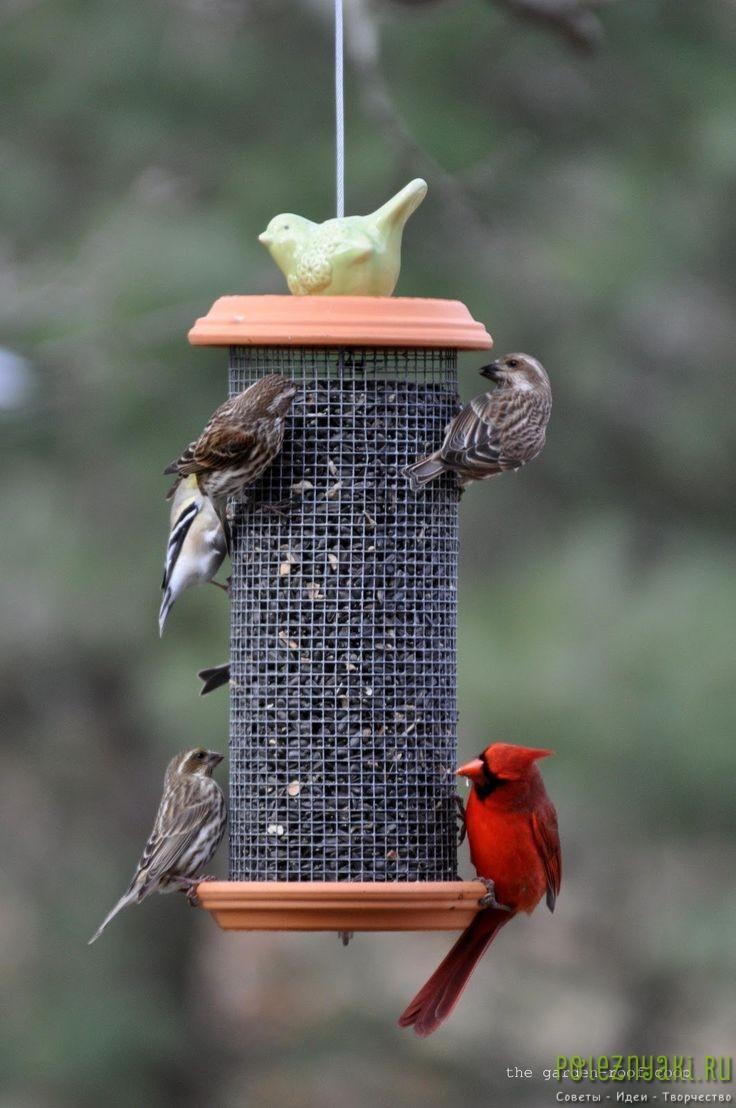 Кормушки для птиц деревянную