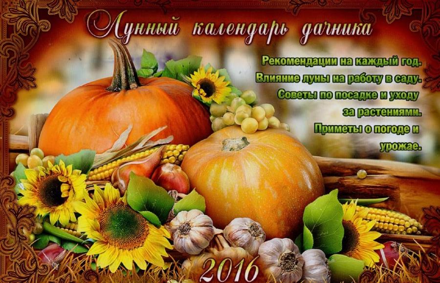 Календарь 2016 по 2017 год