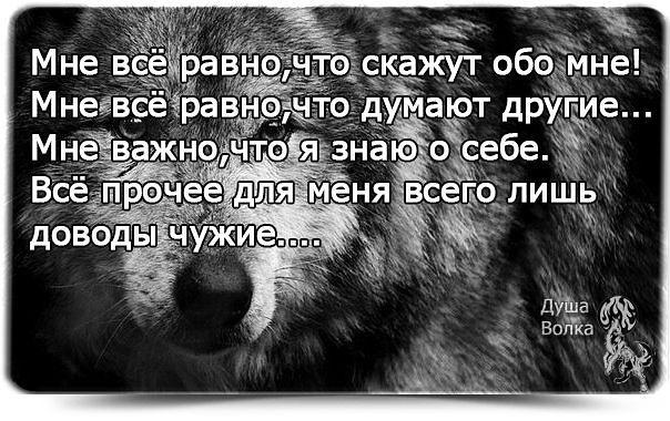 4360286_getImage_3_ (604x380, 70Kb)