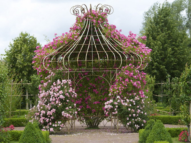 4497432_rosesinparks1 (670x500, 172Kb)