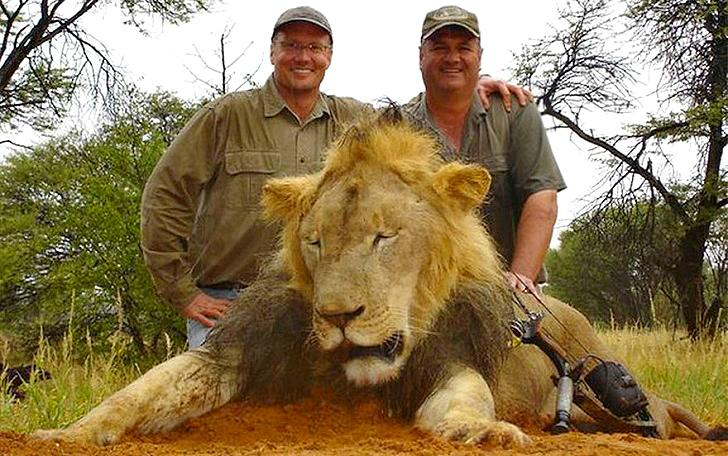Этот человек заплатил 55 тысяч долларов, чтобы убить льва... Теперь его ждёт 10 лет тюрьмы