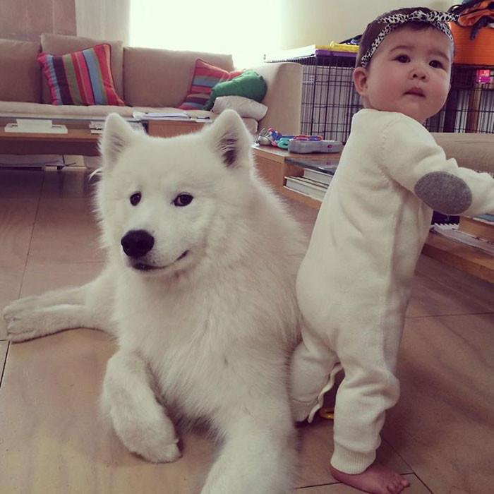 В белом дружба, ребенок, собака