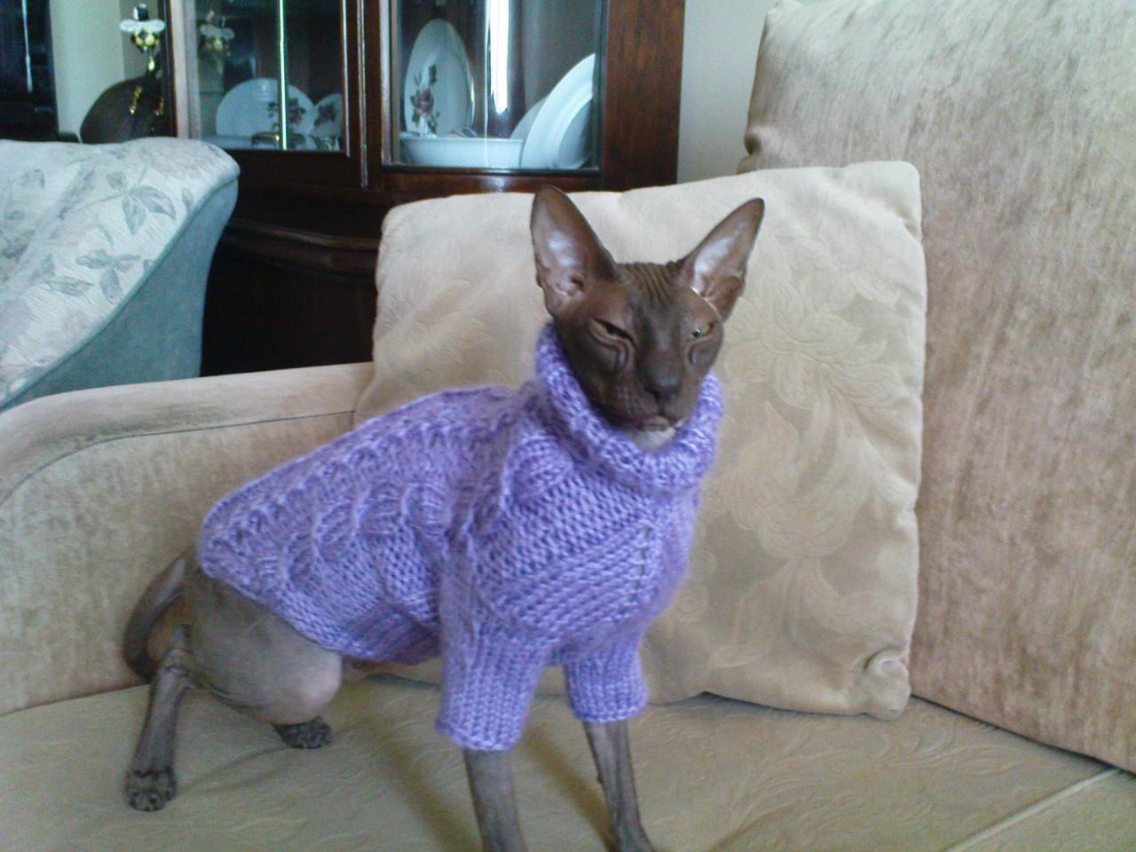 Вязание вещи для кошек