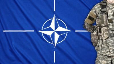 НАТО не будет вступать в гон…
