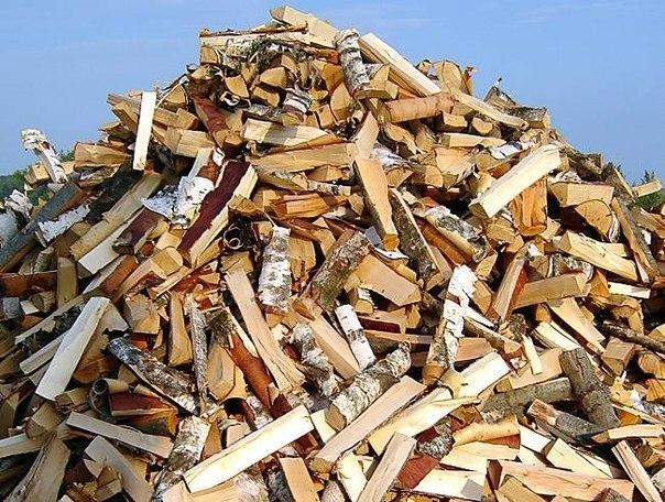 Какие дрова самые теплые