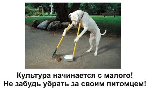 """""""Уберите детей с площадок, собакам срать негде!!"""""""