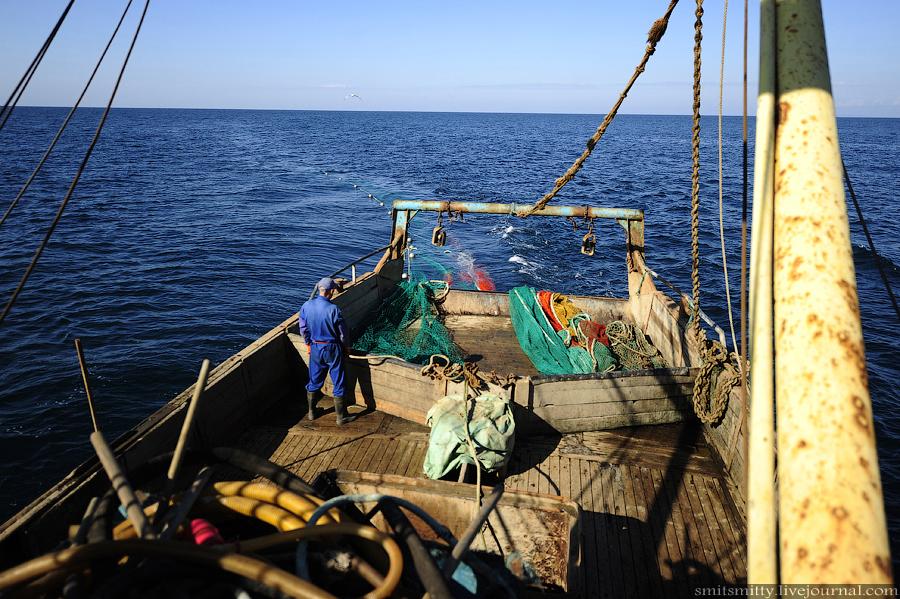 виды сетей для рыбалок