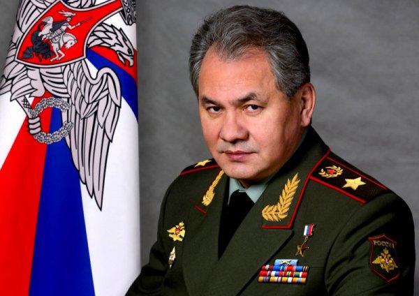 О том, как изменилась армия России при Сергее Шойгу