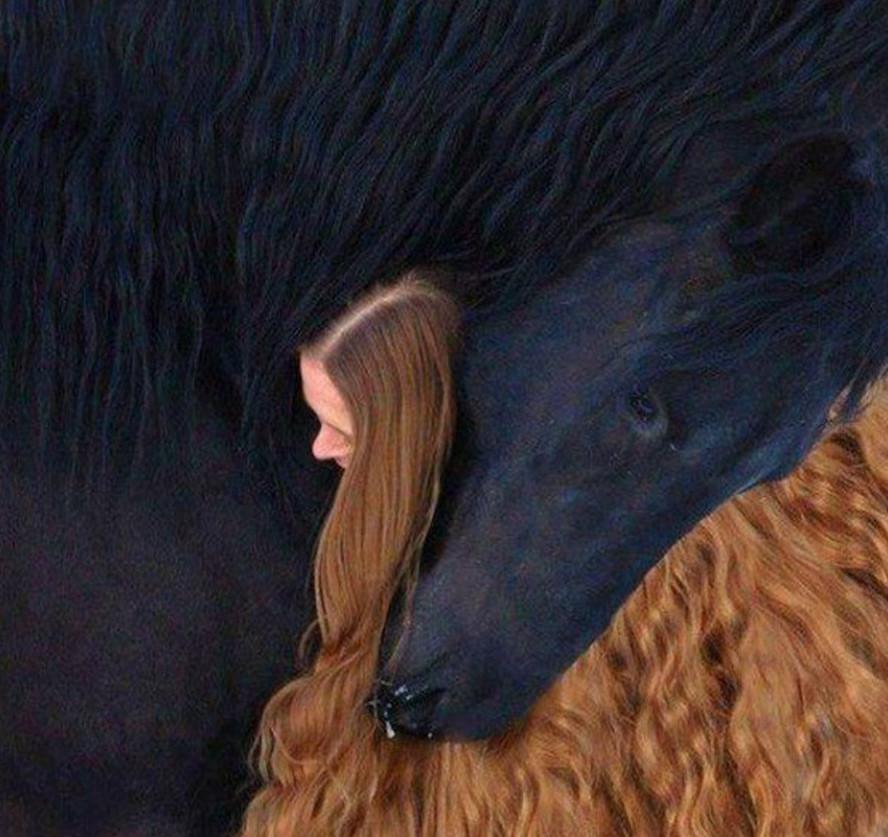 16. Девушка и лошадь. без фотошопа, удивительные фотографии, фото