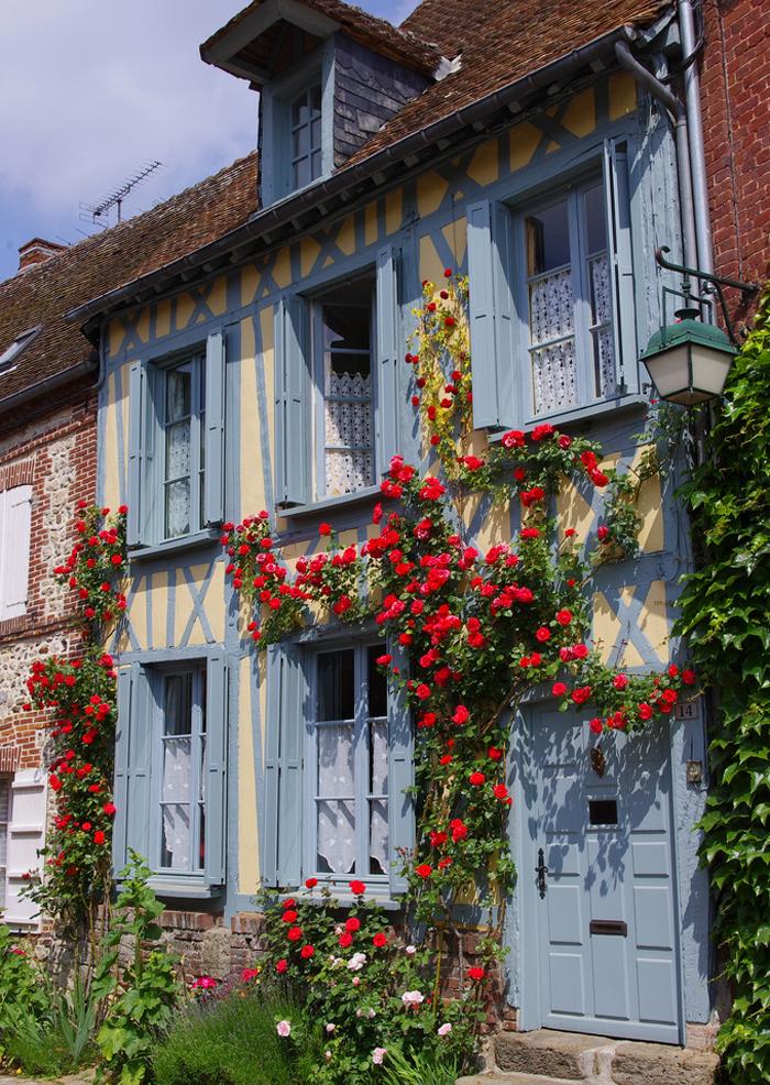 Цветение роз в деревне Жерберуа, Франция