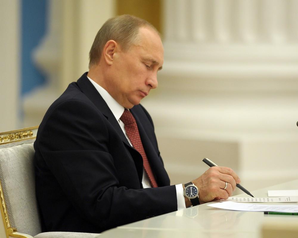Путин утвердил порядок отлова и содержания бездомных животных