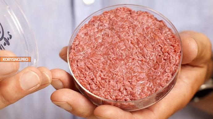 Мясо из пробирки: как его де…