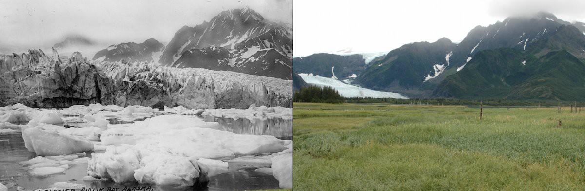 Ледник Петерсен, Аляска история, факты