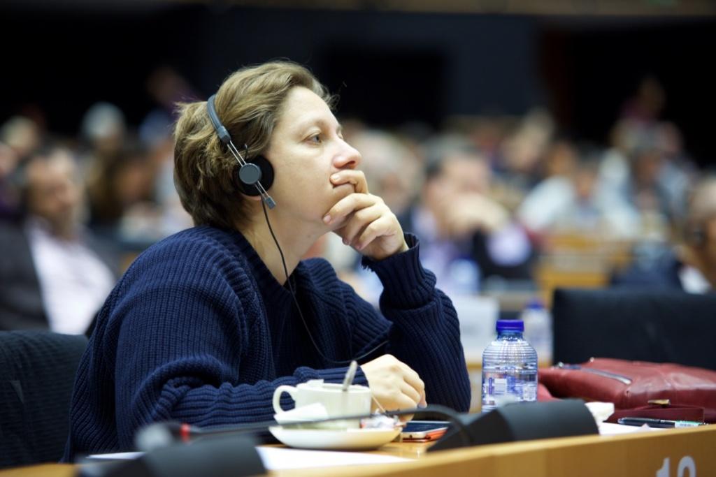 """Депутат Европарламента: ЕС лжет, выдавая Украину за пример демократии"""""""