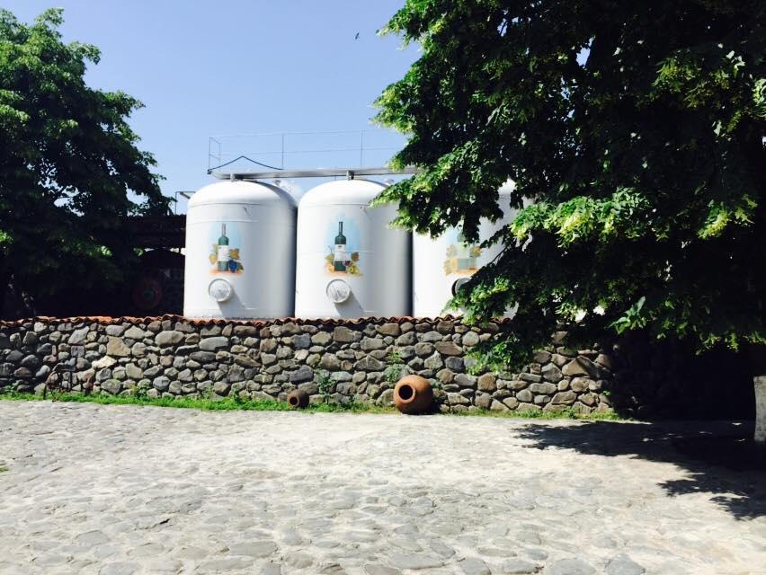 Баки в которых созревает вино Киндзмараули, вино, грузия, факты