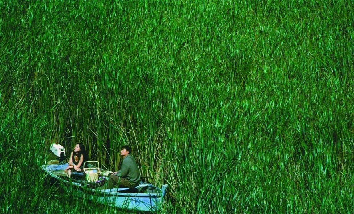 Фильм Джунгли 2012 смотреть онлайн бесплатно в хорошем