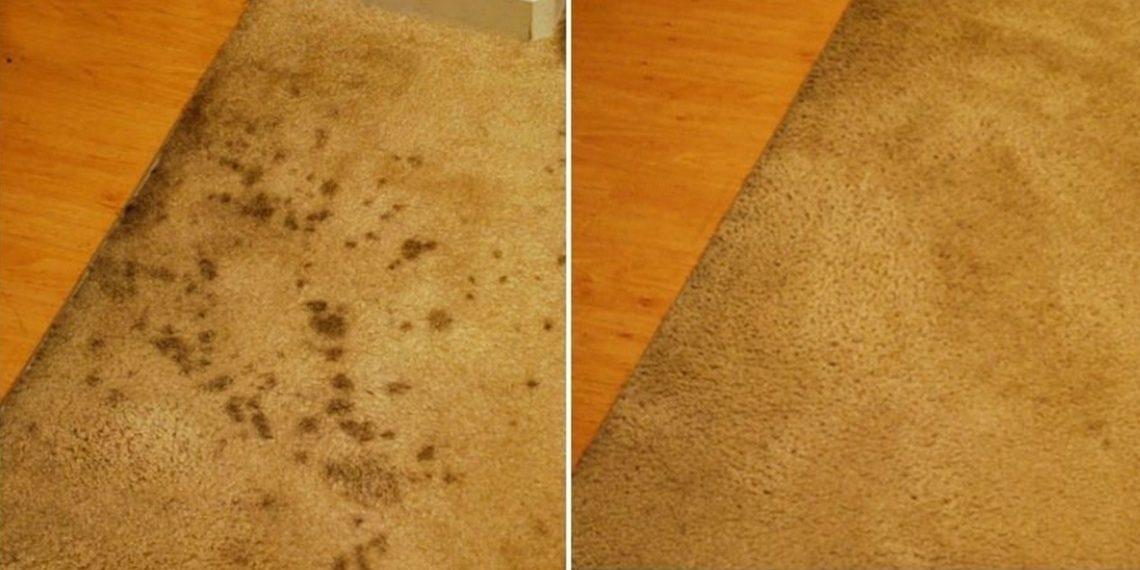 Как почистить ковер, не хуже чем химчистка
