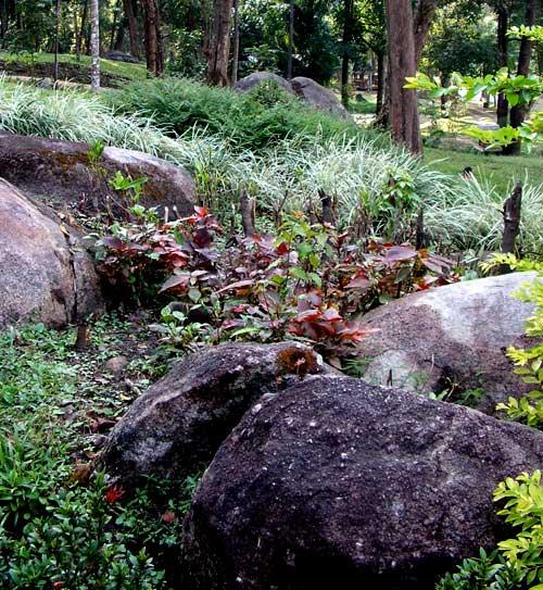 оформление сада - камни на клумбах