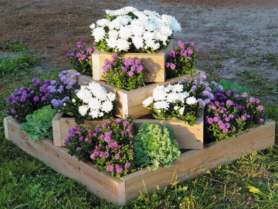 Оформление цветочных клумб своими руками на даче фото