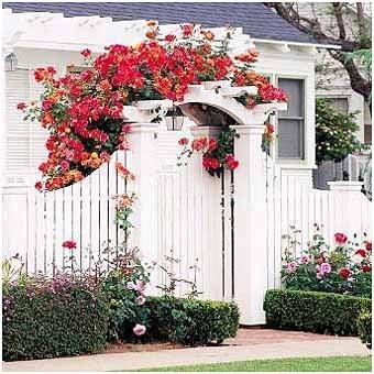 калитка для сада с цветами