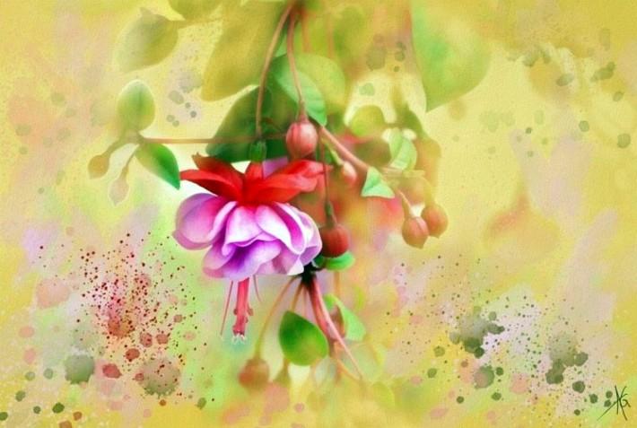 Цветочная акварель Alberto Guillen (27 картин)