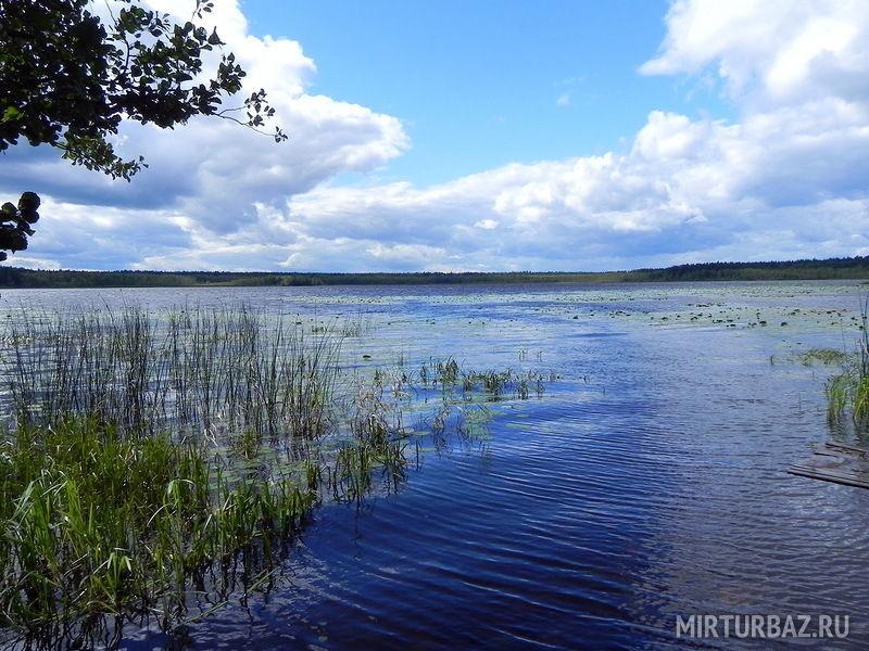 Озеро Вселуг Видео