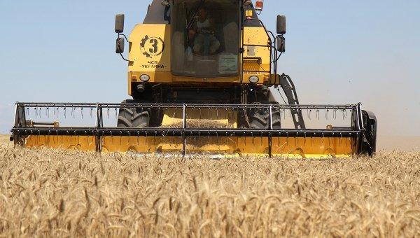 Улюкаев: МЭР против повышения экспортной пошлины на пшеницу