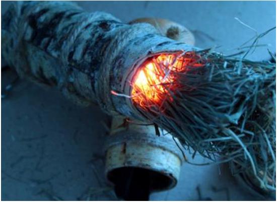 Огневой рожок