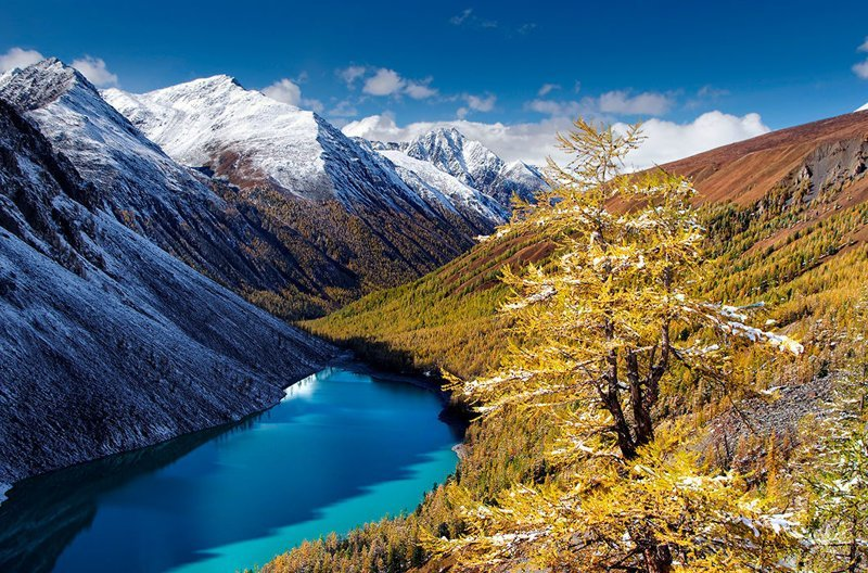 Алтай зима, красота, природа, россия, фото