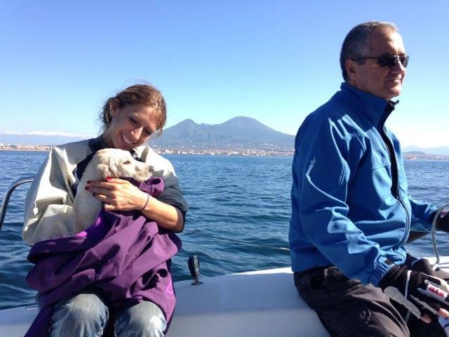 Чудесное спасение щенка, который пробыл в открытом океане несколько часов.