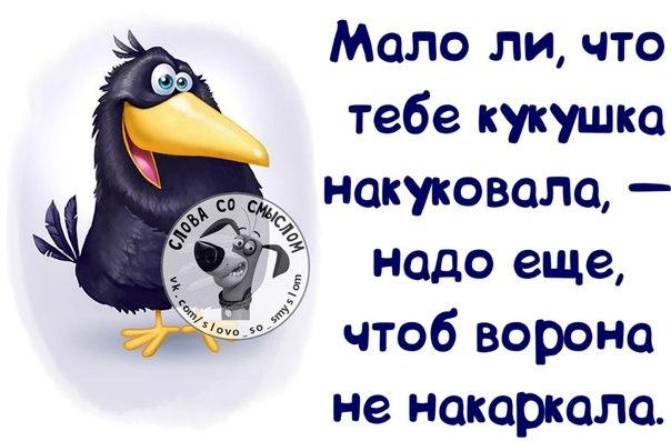 http://mtdata.ru/u23/photoEBE2/20459668494-0/original.jpg