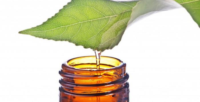 Необычное применение обычных вещей: масло чайного дерева