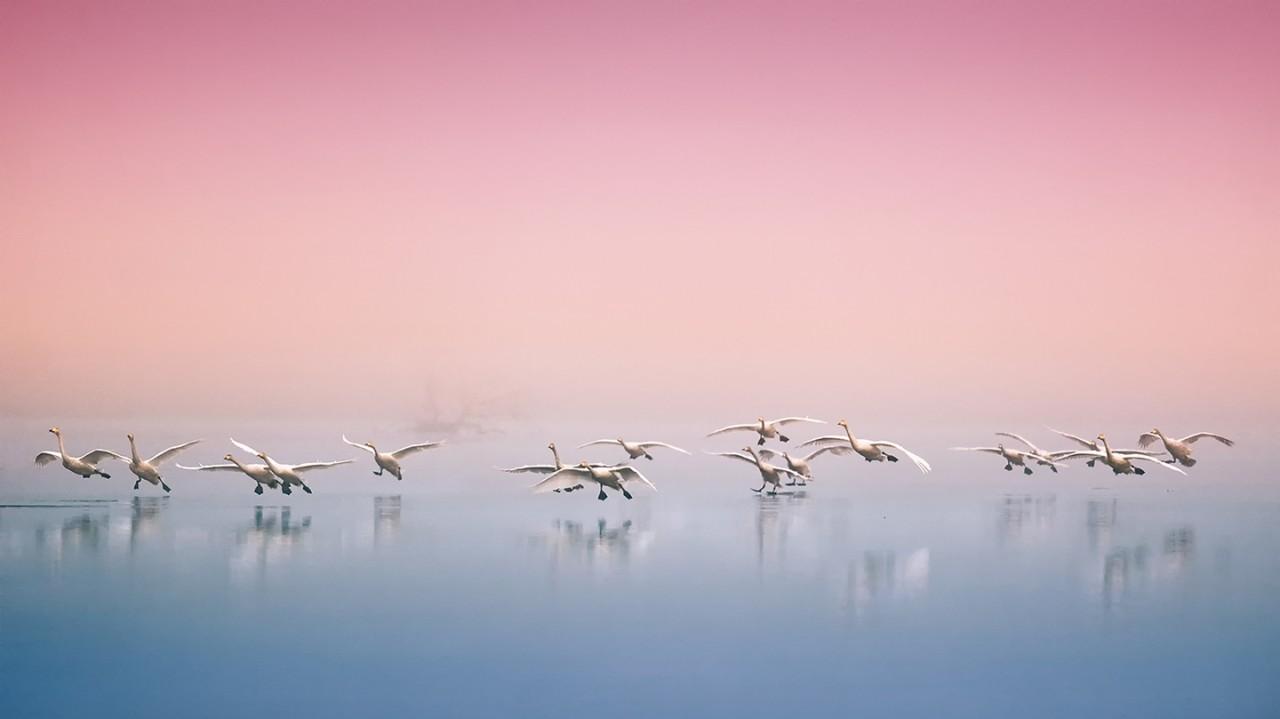 Красота природы от корейского фотографа
