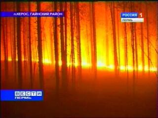 В Прикамье горят сотни гектаров леса