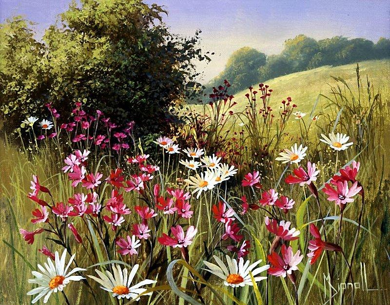 Цветы луговые, художница Mary Dipnall