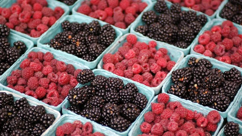 что можно приготовить из ягод